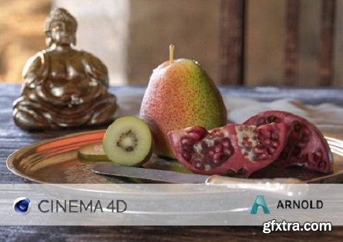 Solid Angle Cinema 4D to Arnold 3.1.1 (Win/Mac)
