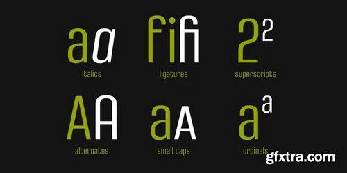 Densa Font Family