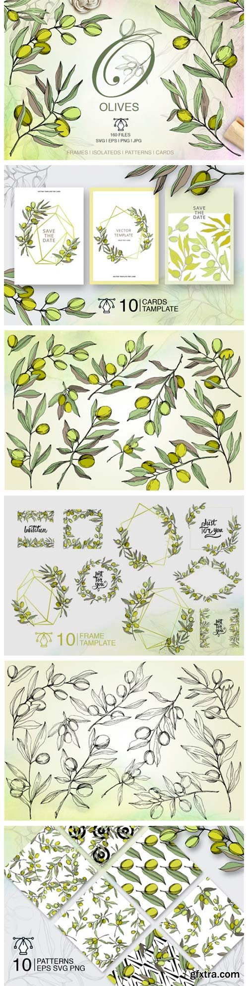 Olives Vector Watercolor Set 4751969