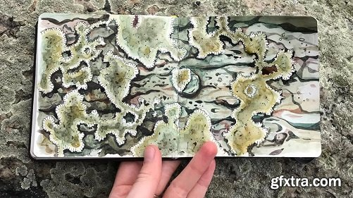 Skillshare Live: Painting Natural Textures With Watercolor