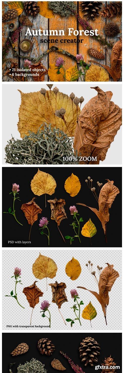 Autumn Forest Scene Creator 5622009