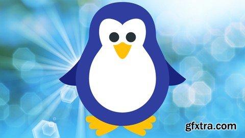 Shell Scripting : Bash Scripting/AWK/SED on Linux/Unix/Bash