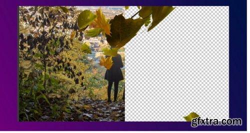 Videohive - Falling Leaves Creator - 28411446