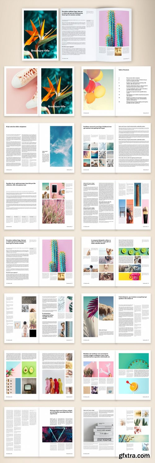Retro and Simple Brochure Layout 375909568