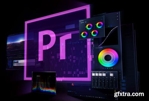 ProfileSchool. - Adobe Premiere Pro. Advanced level