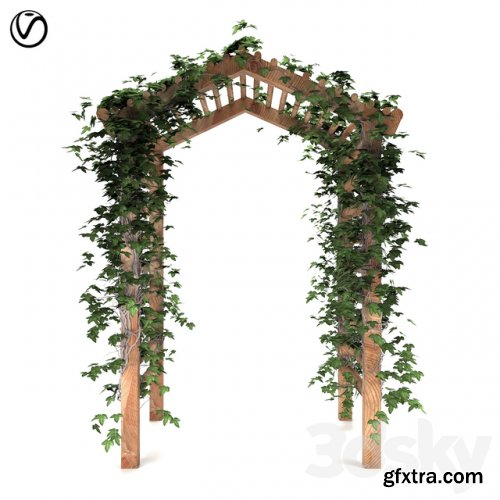 Arbor with Ivy
