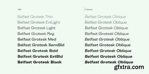 Belfast Grotesk Font Family