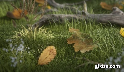 Gumroad – Leaves Shaders Pack #1 for C4D
