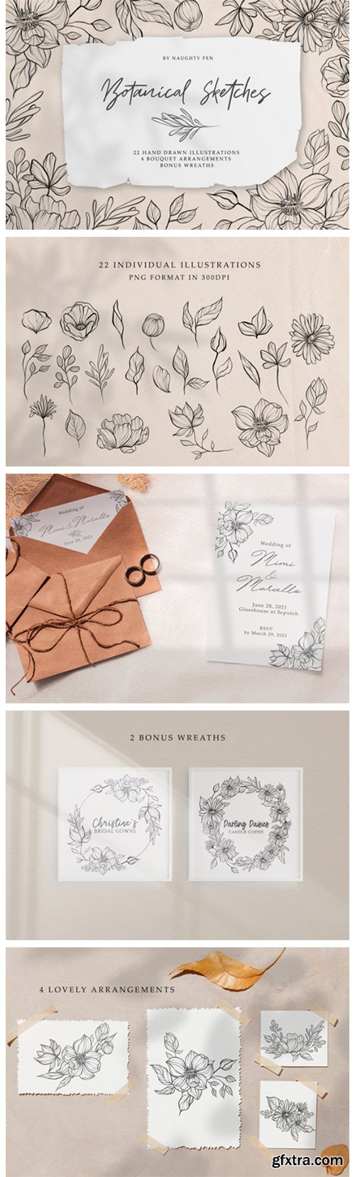 Botanical Sketches Floral Line Art 6716762