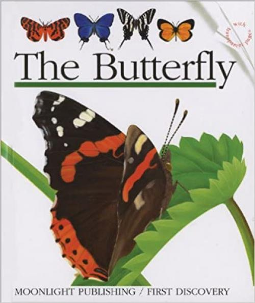 The Butterfly (First Discovery Series)