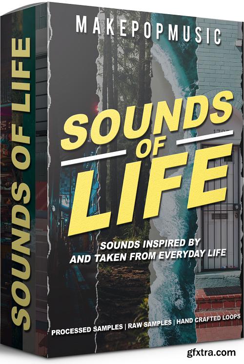 Make Pop Music Sounds of Life WAV-DECiBEL