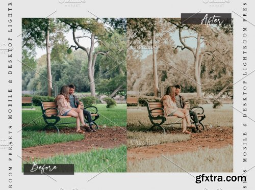 CreativeMarket - SOFT AMBER - Lightroom Presets 5446666