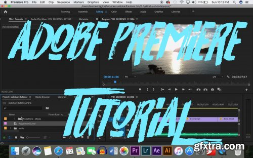 Learn PREMIERE PRO in 20 Minutes - Basic Editing for Beginners!