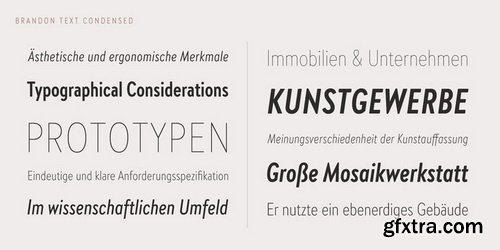 Brandon Text Condensed Font Family