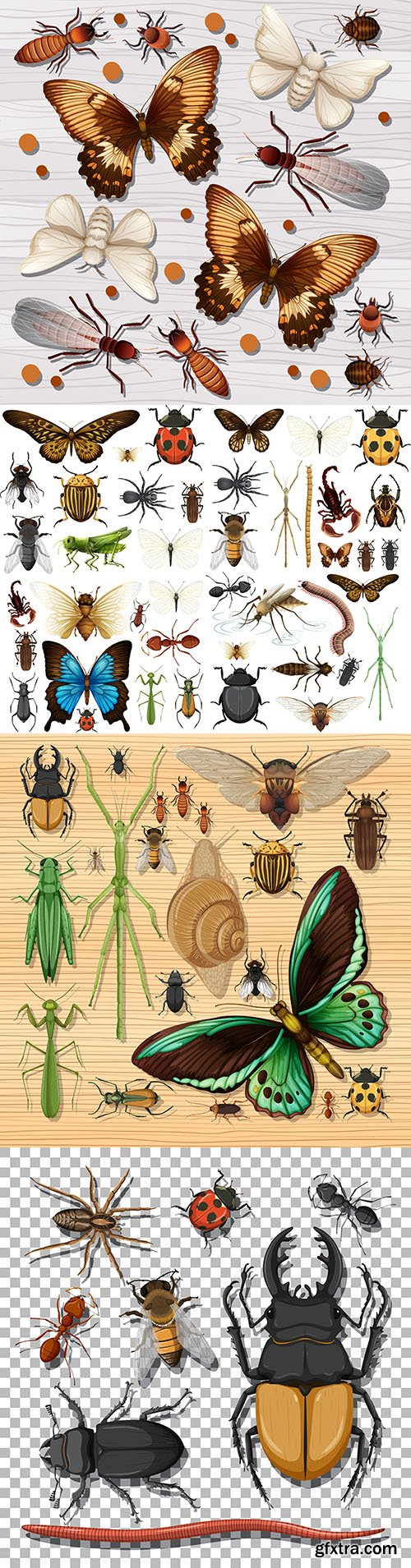 Set of different insects on background of white wooden wallpaper