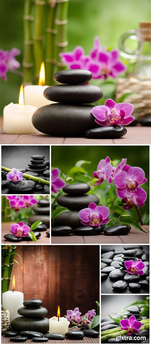 Orchids and spa stones stock photo