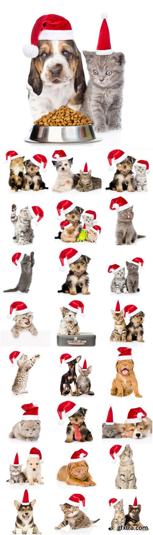 New Year and Christmas stock photos №52