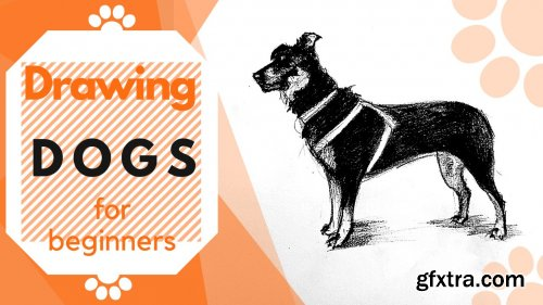 The Dog Figure | Drawing Animals For Beginners