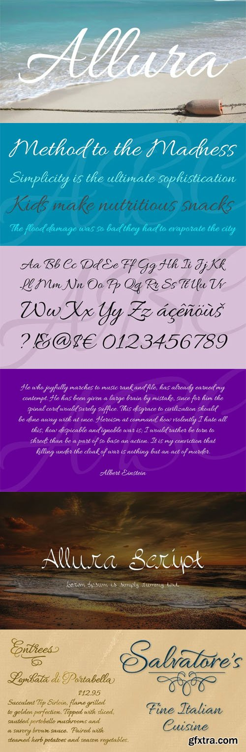 Allura Calligraphy Script Font [2-Weight]