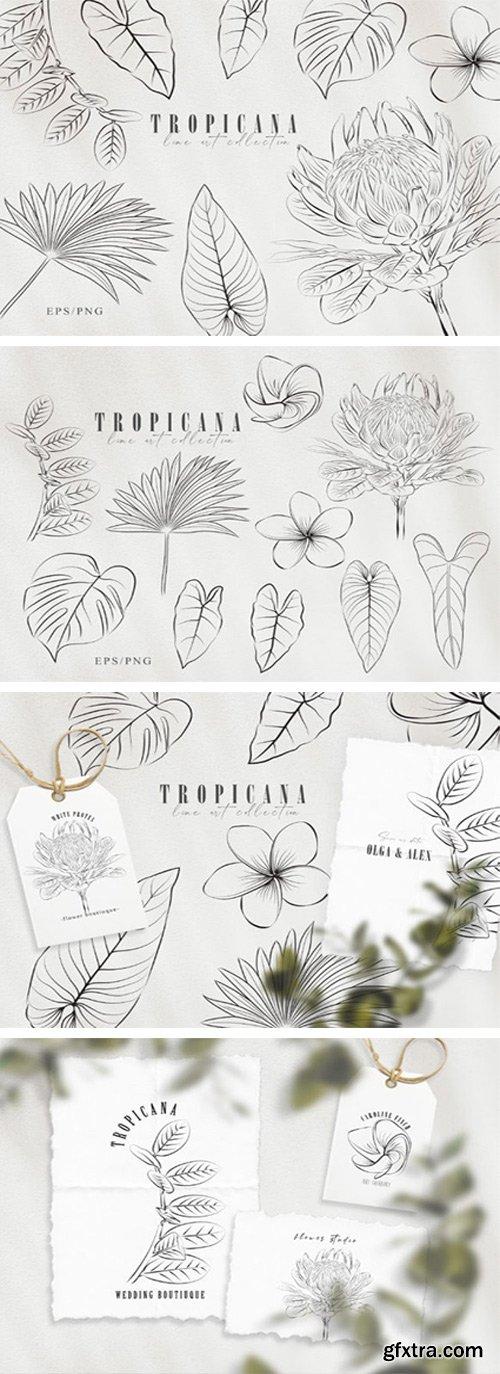 Line Art Tropical Plants Clipart Set 7570346
