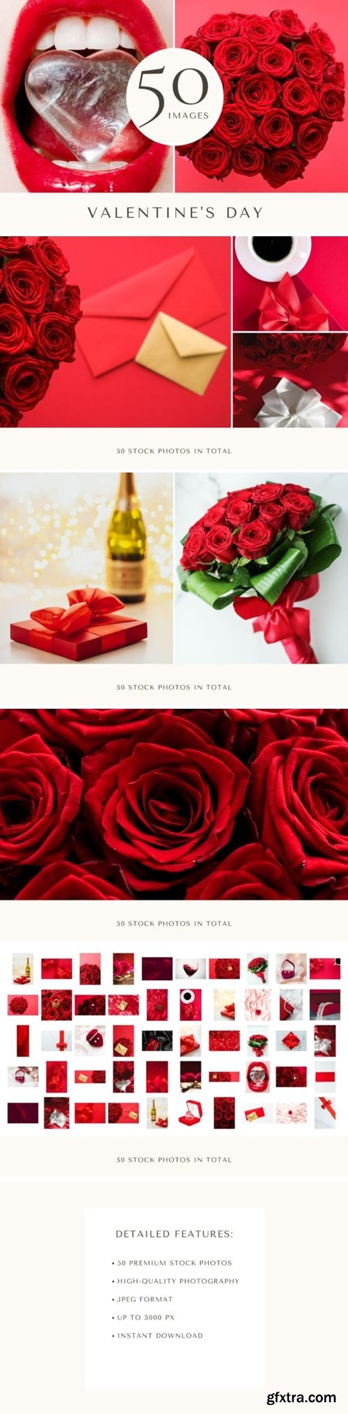 50 Images | Valentines Day Photo Bundle 8032157