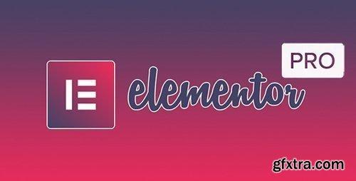 Elementor Pro v3.0.10 / Elementor v3.1.0 - Live Page Builder For WordPress - NULLED + Page Archive & Popup Templates
