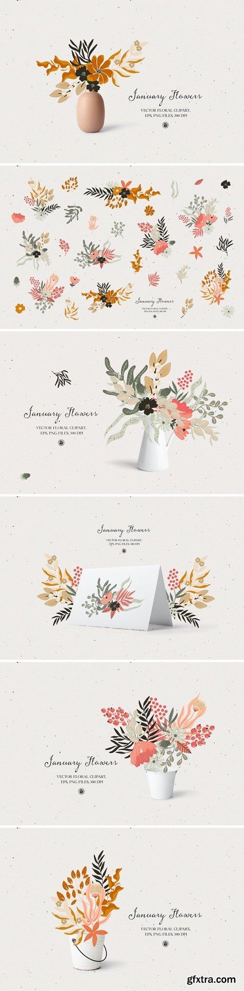 January Flowers - vector clipart set