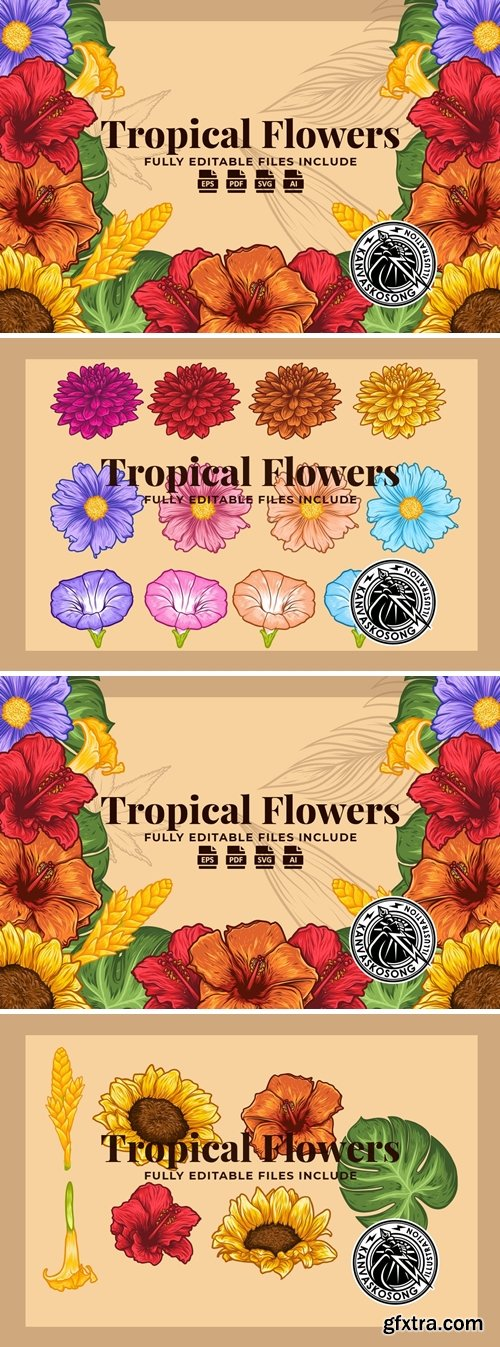 Tropical Flowers Illustration Pack
