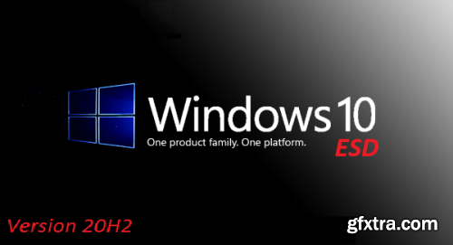 Windows 10 Pro 20H2 10.0.19042.746 3in1 OEM ESD en-US Preactivated January 2021