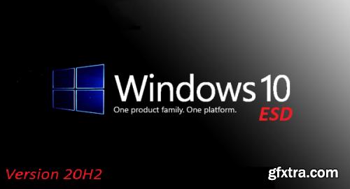 Windows 10 20H2 10.0.19042.74 10in1 OEM en-US Preactivated January 2021