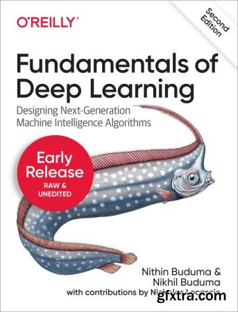 Fundamentals of Deep Learning, 2nd Edition
