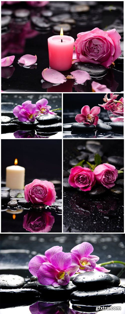 Candles, spa stones, orchids and roses stock photo