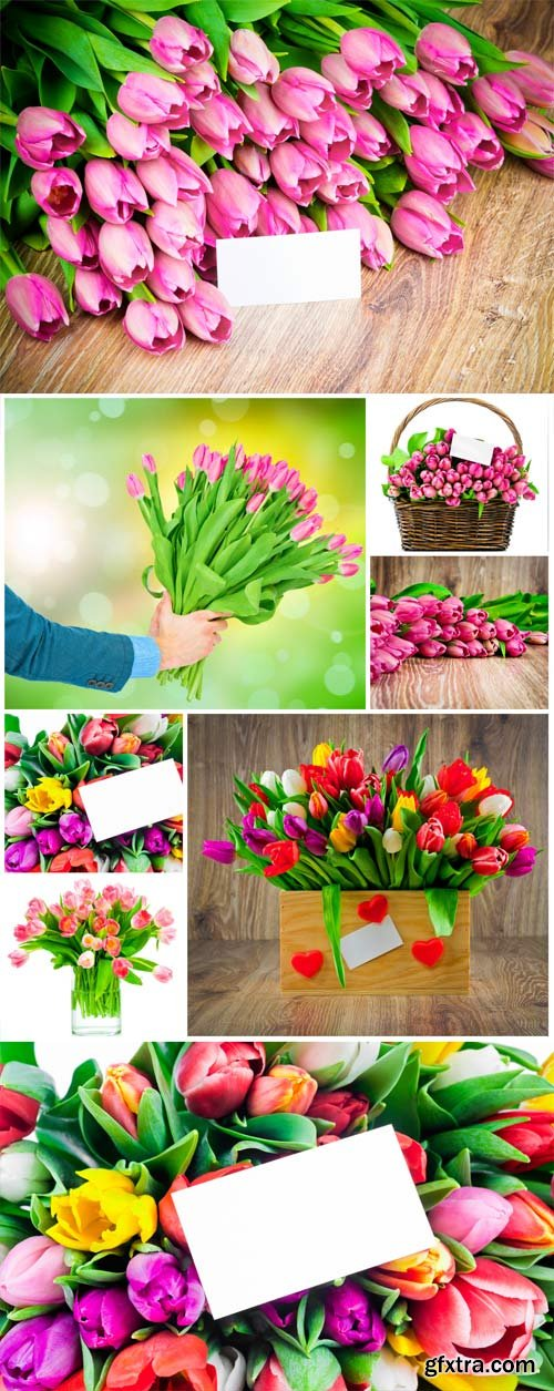 Bouquets of colorful tulips stock photo