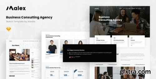 ThemeForest - Malex v1.1.0 - Business Consulting Agency Sketch Template - 28727802