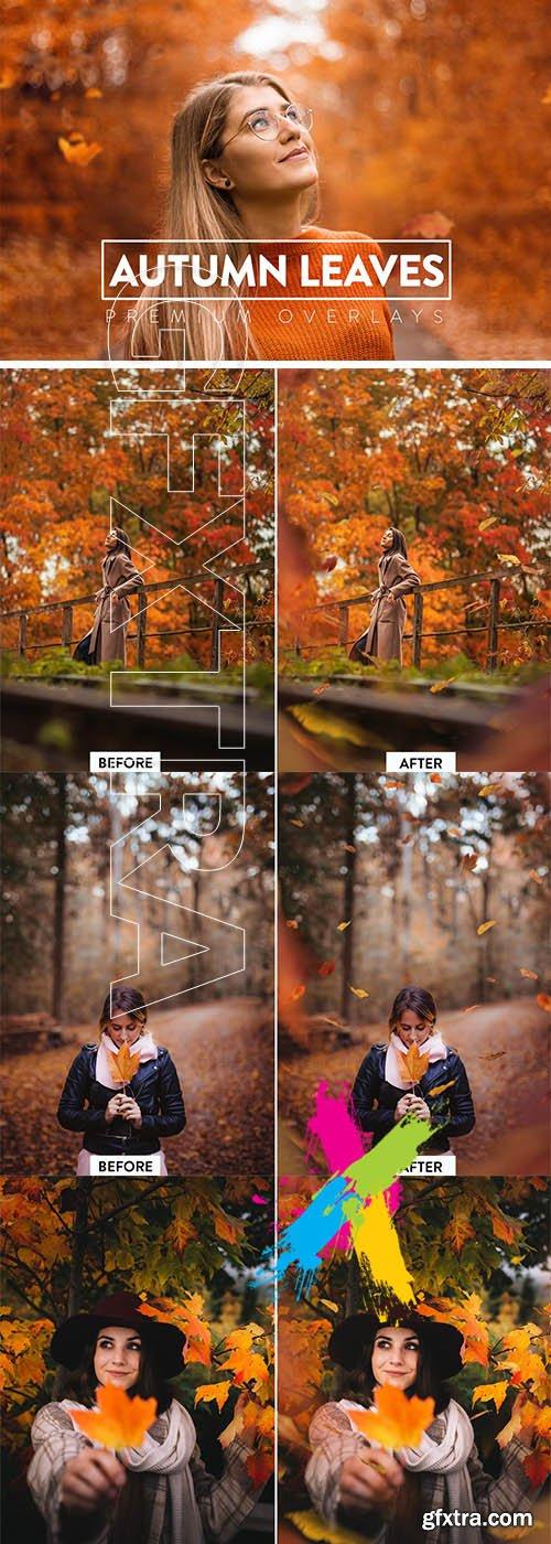 CreativeMarket - 40 Autumn Leaves Overlays 5928912