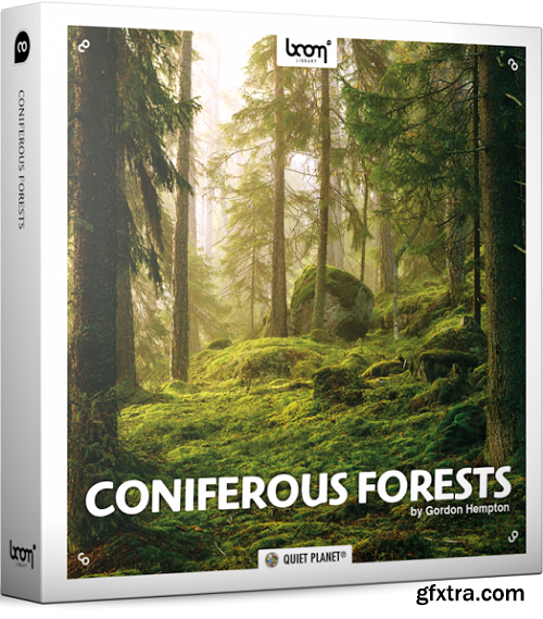 Boom Library Coniferous Forests STEREO & SURROUND Edition