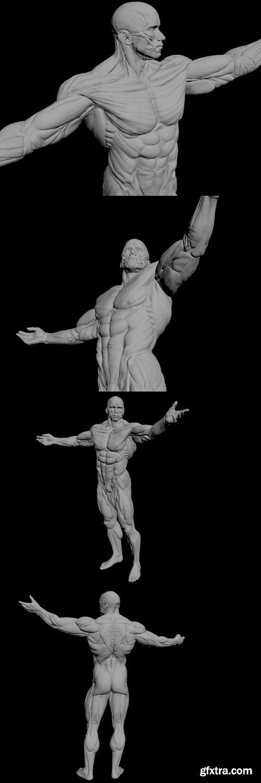 Apollon Sculpture