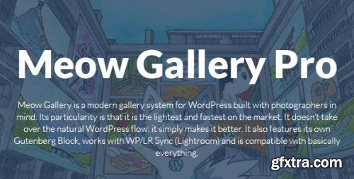 MeowApps - Meow Gallery Pro v4.1.0 - Modern Gallery System For WordPress - NULLED