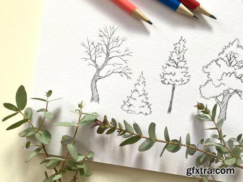 Draw Simple, Interesting Trees