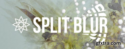 Aescripts Split Blur v1.0.0 for After Effects