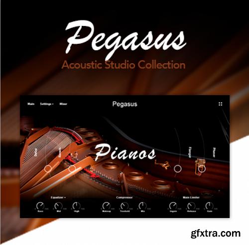 Muze PA Pegasus KONTAKT