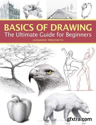 Basics of Drawing: The Ultimate Guide for Beginners