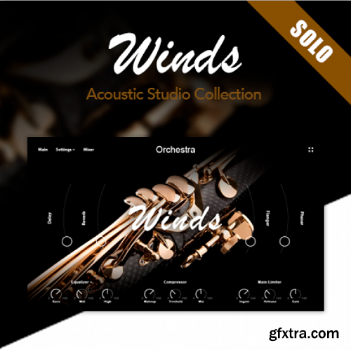 Muze Woodwinds Solo KONTAKT