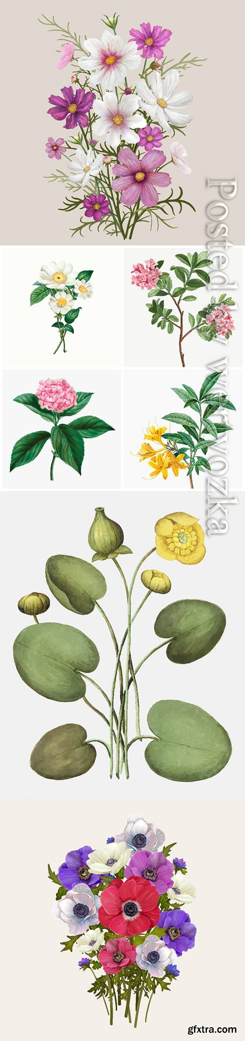 Vector different flowers