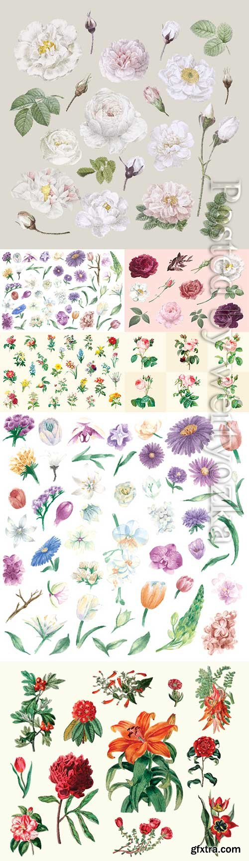 Drawn vector different flowers