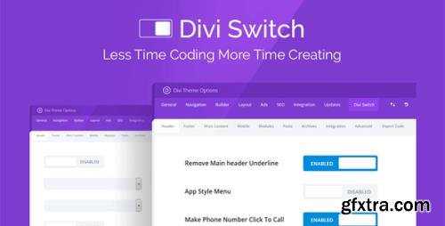 DiviSpace - Divi Switch v4.0.5 - Makes Customizing The Divi Theme - NULLED