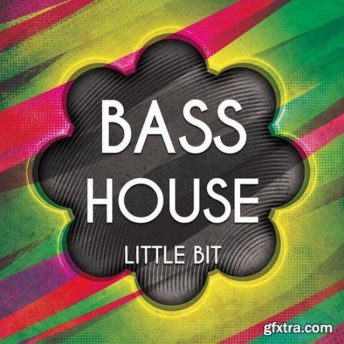 Little Bit Bass House 1 WAV