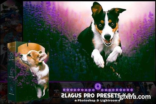 PRO Presets - V 04 - Photoshop & Lightroom