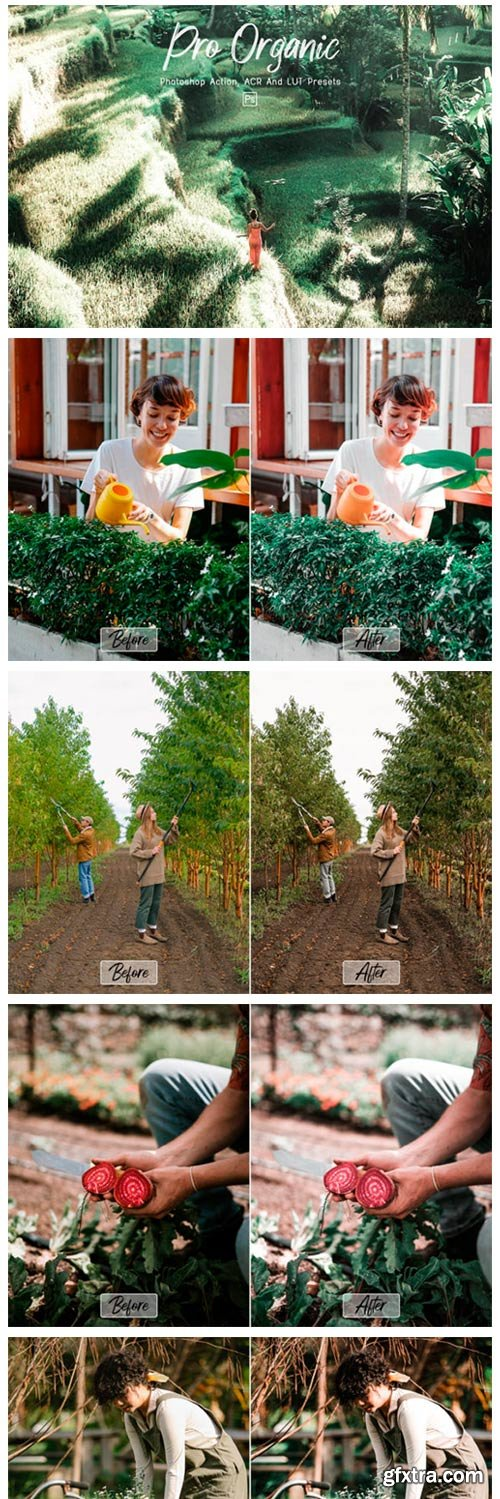 10 Pro Organic Photoshop Actions ACR LUT 11277922