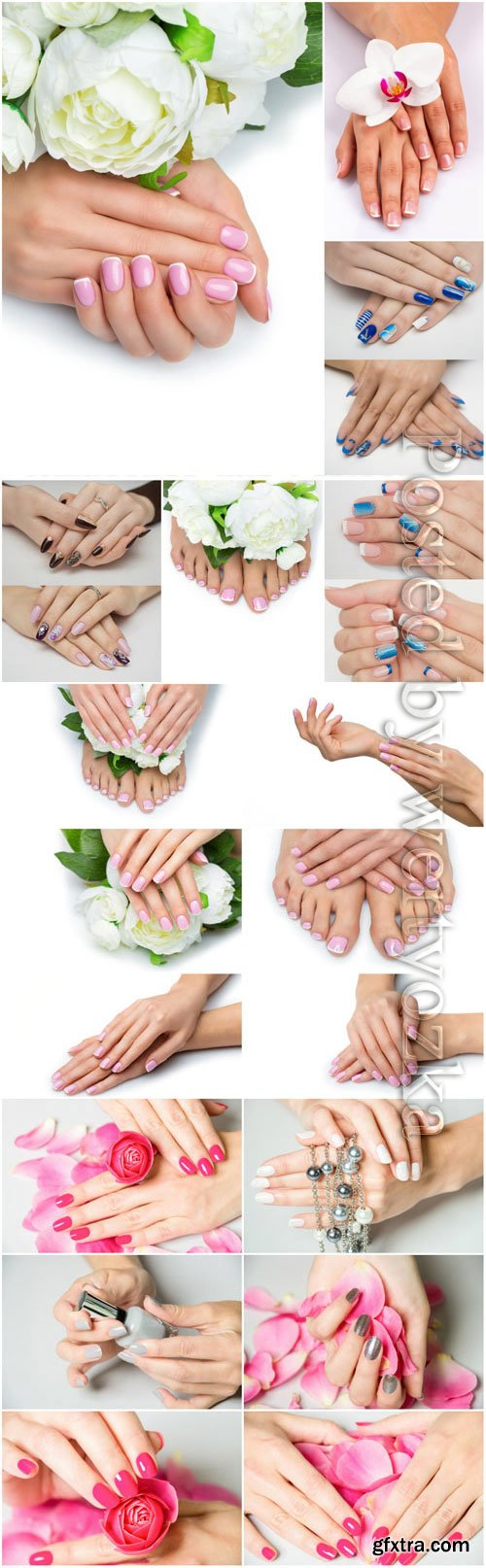 Pedicure and manicure, beautiful handles with flowers stock photo